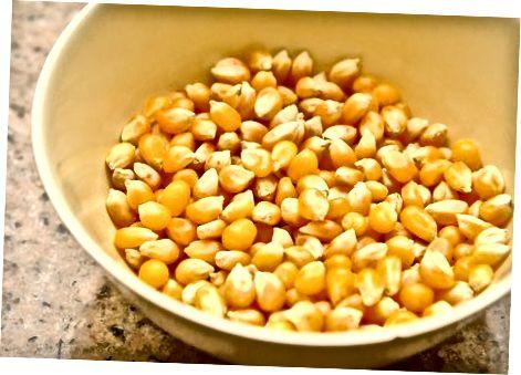 Trocknen von Popcornsamen (Körner)