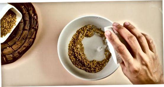 Омекшавање семенки у води