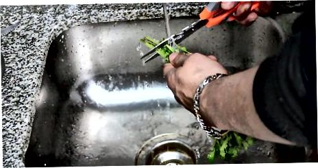 Contenidor d'aigua
