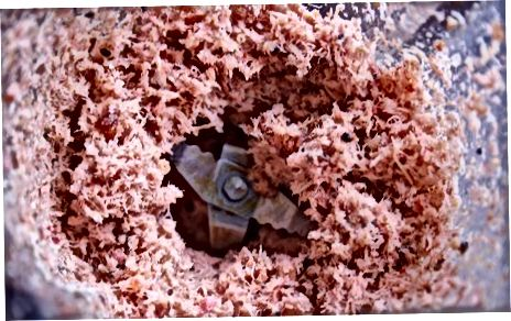 清洁和研磨虾