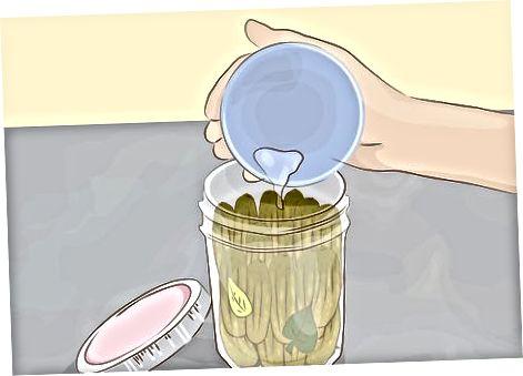 Perime lakto-fermentuese