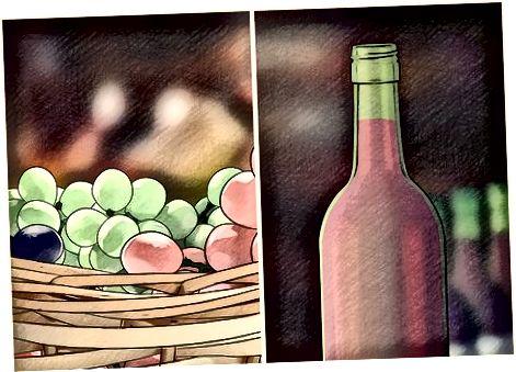 Undirbúningur fyrir árangursríkan vínberavöxt