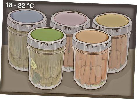 Menaxhimi i Procesit të Lakto-fermentimit