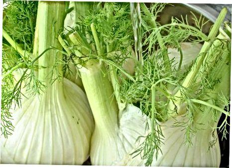Steikt fennel með sítrónu og pipar