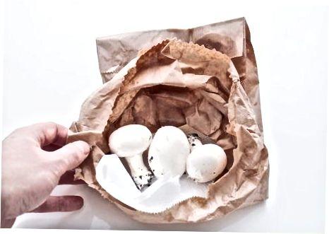 Ruajtja e kërpudhave siç duhet