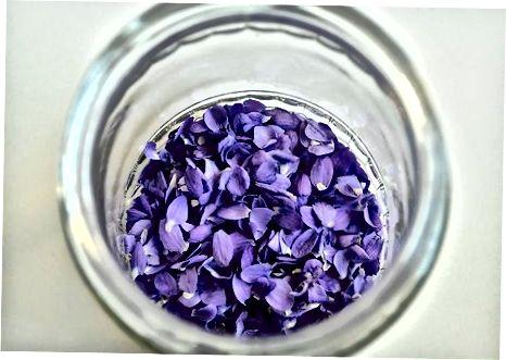 Violetinis sirupas 1