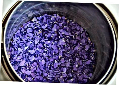 Violetinis sirupas 2