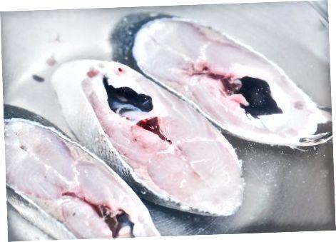 Përdorimi i metodave alternative për ngrirjen e peshkut
