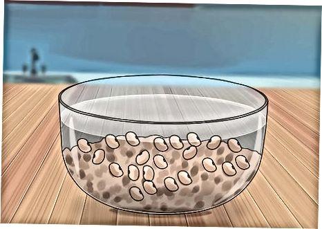 Quritilgan fasolni konserva tayyorlash
