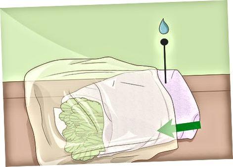 Refrigeració de naps