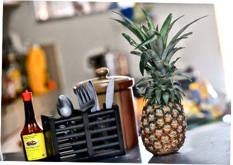 Руковање незрелим ананасом