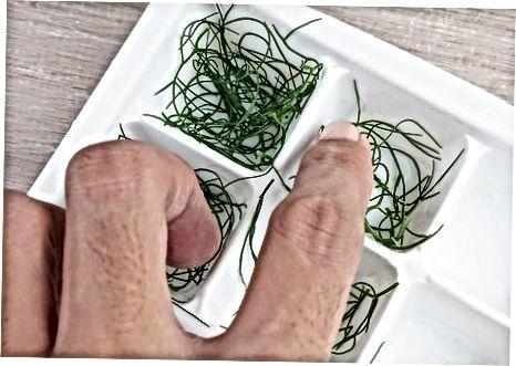 Frystir forskammtar fennel lauf