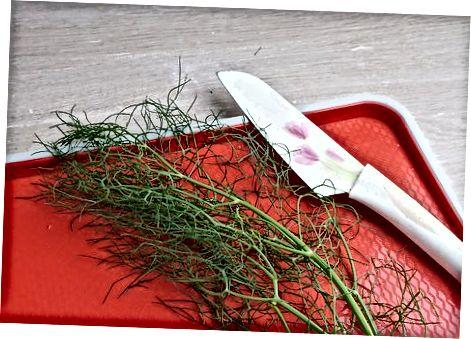 Blanching og frysta fennel perur