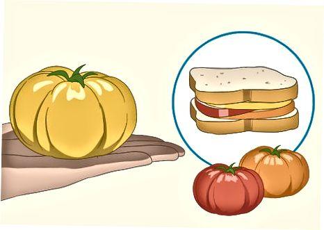 Výber konkrétnych druhov paradajok