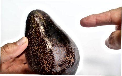 Огляд авокадо