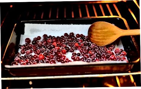 Cranberries trocknen