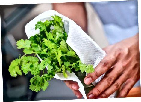 Чување свежих биљака
