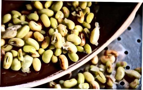 Methode Eins: Gedämpfte Fava-Bohnen