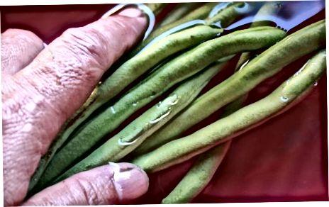 Methode 4: Geröstete Bohnen