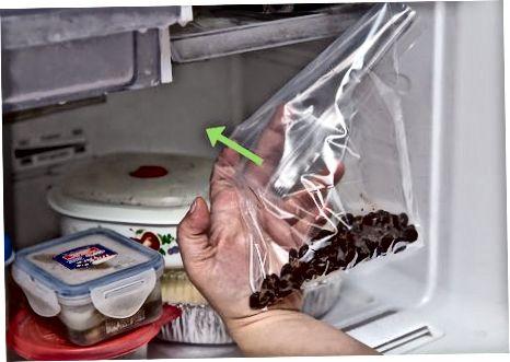 Doimiy shokolad chiplarini tayyorlash