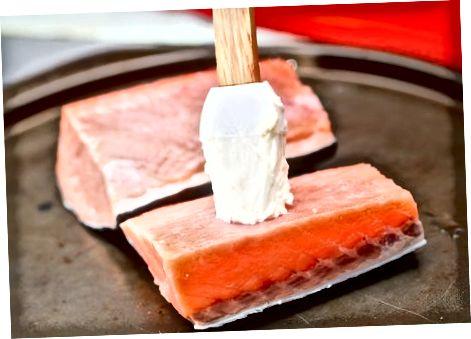 Marrja e Salmonit të majonezës