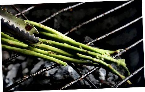 Marrja e Opës e thjeshtë në skarë me Asparagus