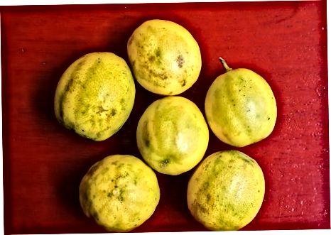 Hisoblagichda limon pishib