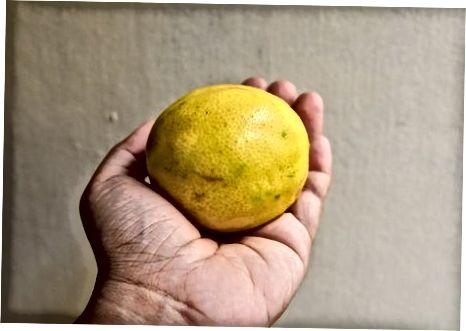 Limon pishganini bilish