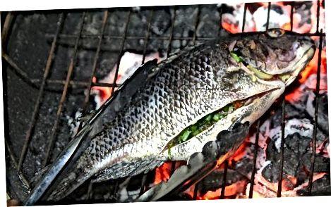 Kochen Sie Ihren Fisch