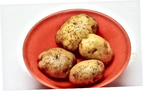 Gekochte neue Kartoffeln
