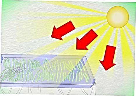 Sonnenlichtmethode