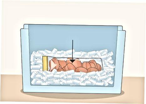 Tharja e ngrirjes me akull të thatë