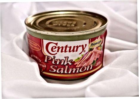 Kaedah Salmon dalam tin