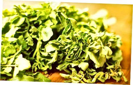 Bodring va cress salatasi