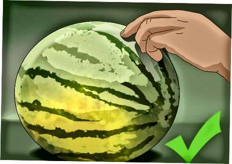 انتخاب هندوانه