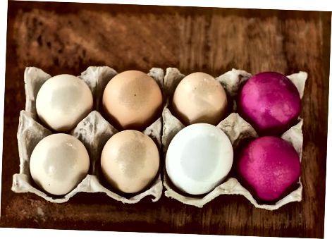 Vrste jajc
