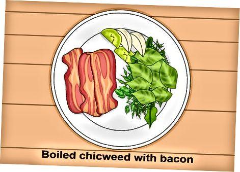 Shtimi i Chickweed të freskët në recetat e darkës