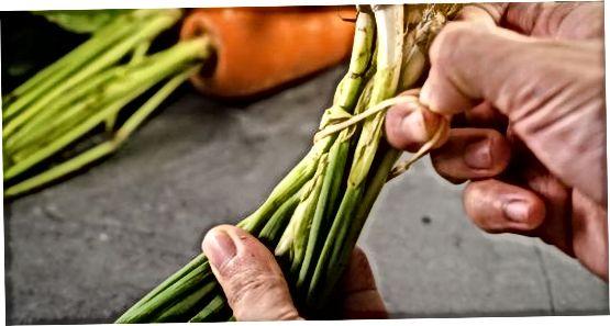 Veggies-ni saqlashga tayyor bo'lish