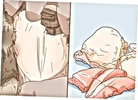 Шкіра дикої індички