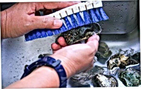 ເຕົາອົບ Oysters