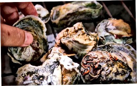 Oesters roosteren
