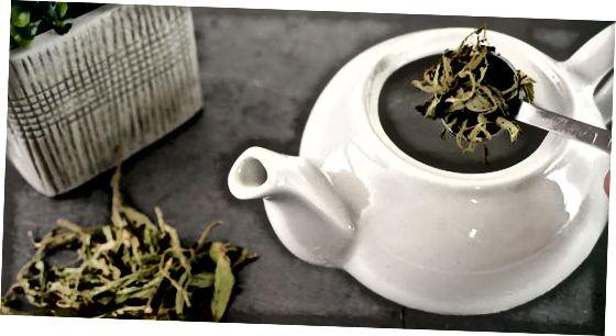 Fazendo chá verde de folhas soltas