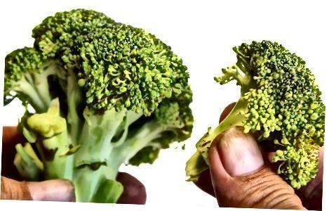 Brokkoli reinigen