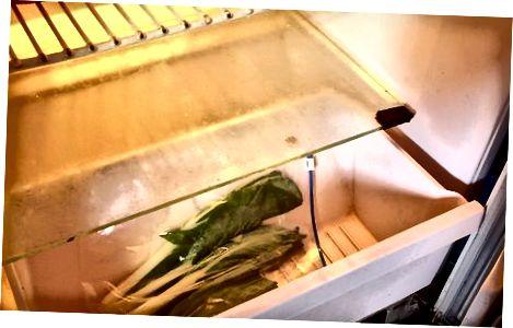Чување зелених огрлица