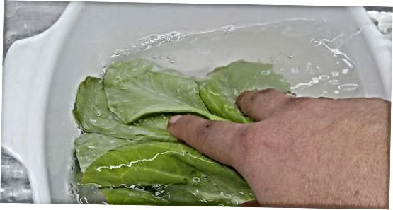 Namakanje in zamahovanje zelenih