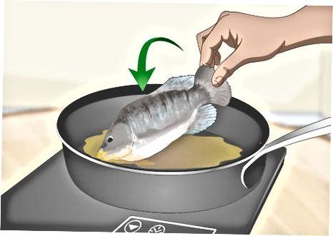 Auftauen von Fischen in der Mikrowelle