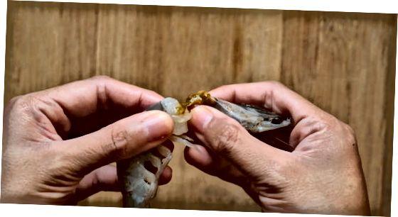 Krevettide koorimine ja eraldamine