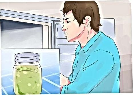 Jūsų kūdikio maisto kūrimas