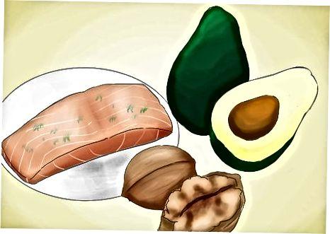 Ushqimi i proteinave alternative dhe burimeve të yndyrës