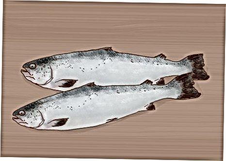 Nurodykite, kurią žuvį valgyti